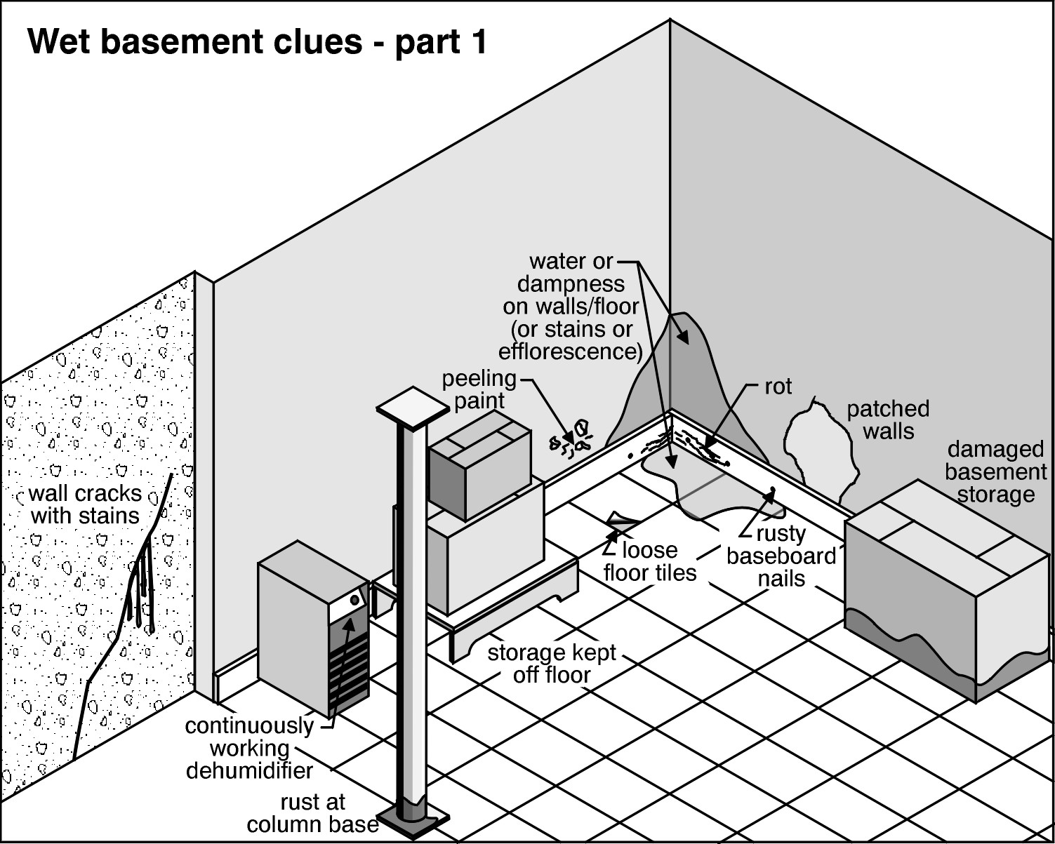 Common Complaints Damp Basement Real Home Energy Solutions - Damp basement walls