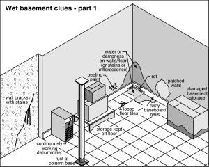 Wet Basement Clues